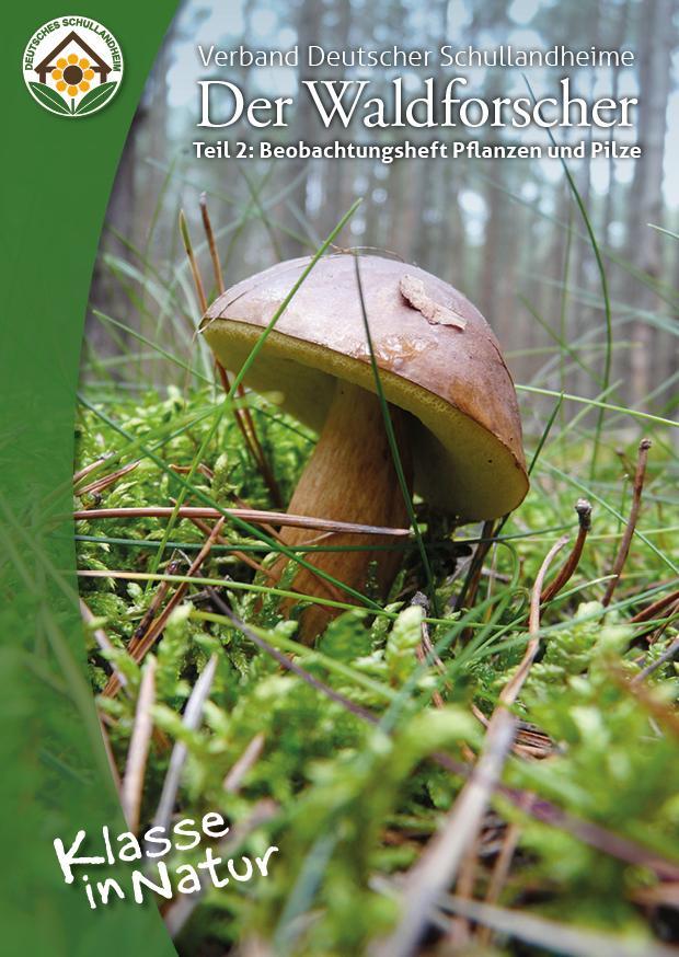 Der Waldforscher Teil 2: Pflanzen und Pilze